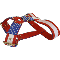 "Szelki ""Stars and Stripes"" 5cm"